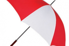 promotional-umbrella-250x250